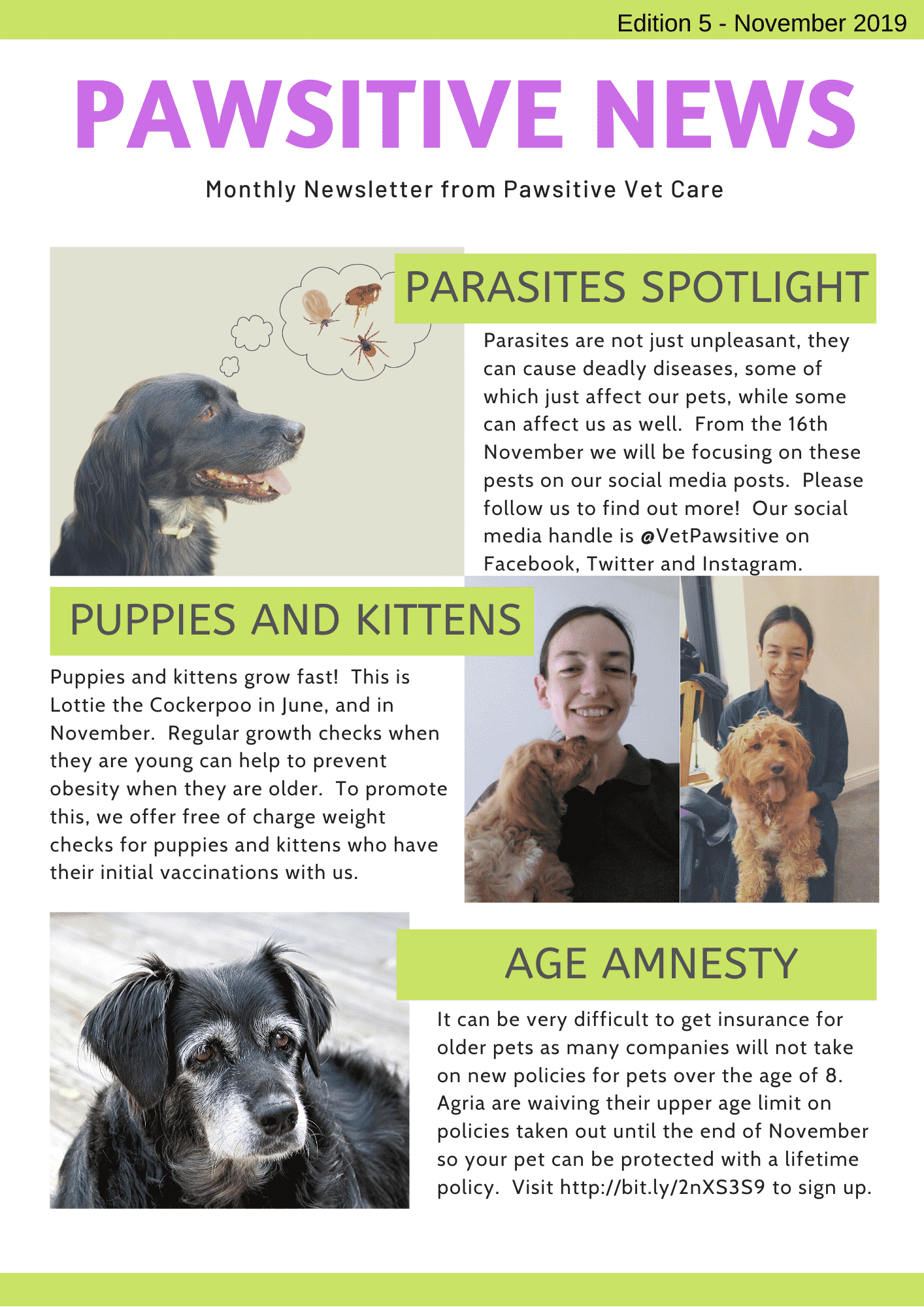 Pawsitive News Issue 5