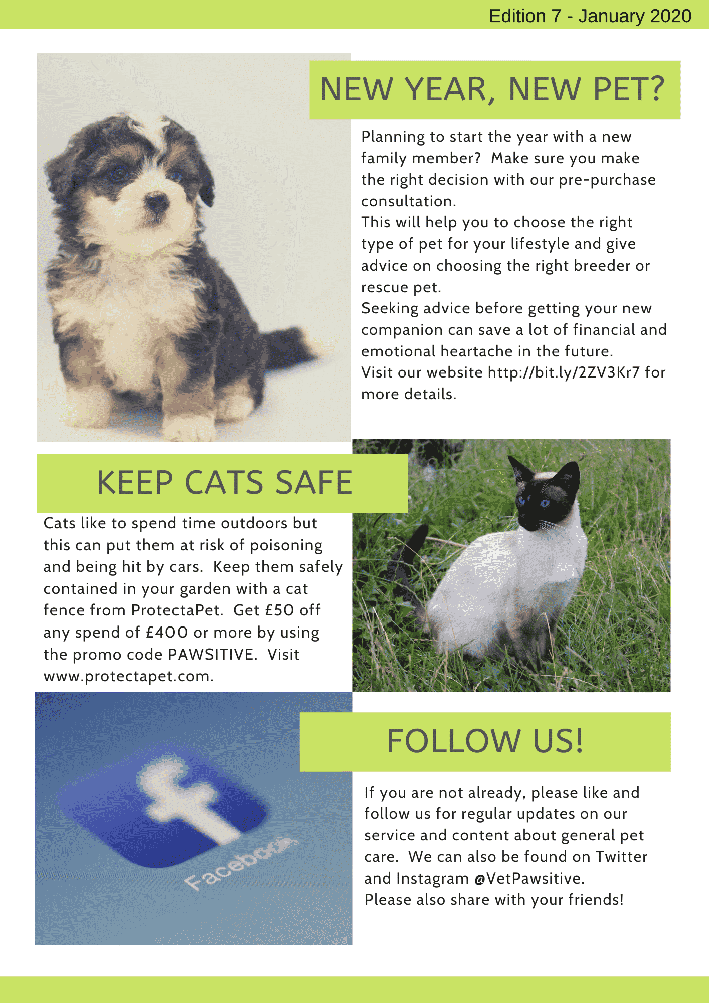 Pawsitive News Issue 7 (1)