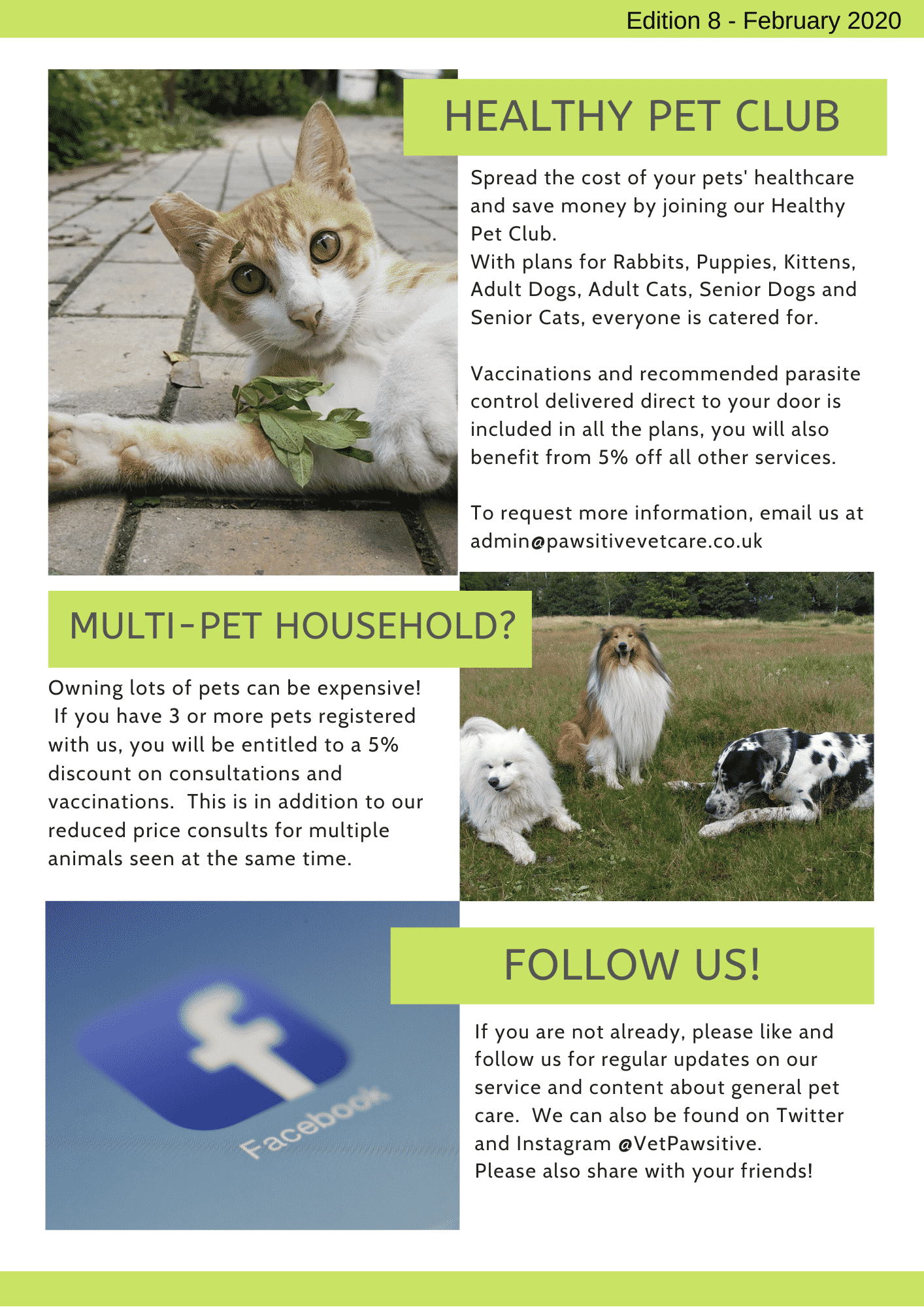 Pawsitive News Issue 8 (1)