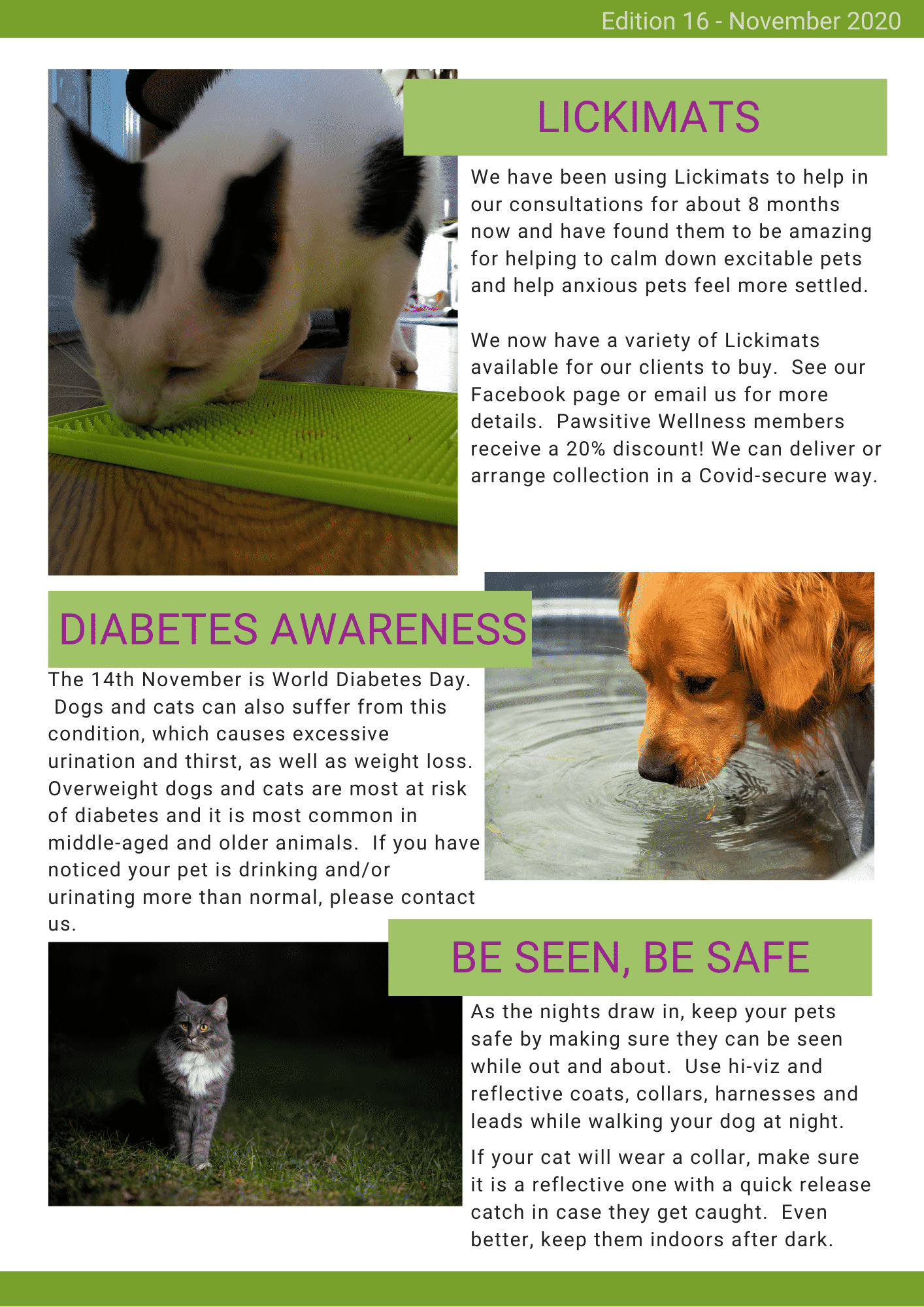 Pawsitive News Issue 16 (3)